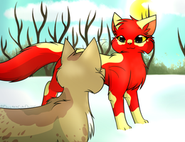 TsC - Redpaw's training on snowy day by FlareAKACuteFlareon