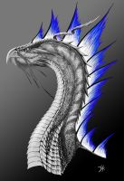 Draconis Argenteum by Ex-Shadow