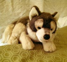 Timber Wolf Plush by AlixRae