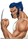 Wolverine Color by MaxieArt