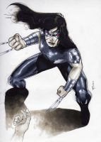 X-23 by RichardCox