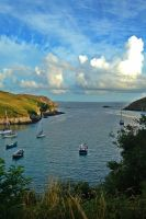 Solva Harbour by Falassion