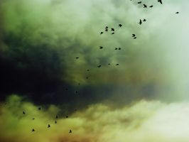 nature_sky_moody crea by Aimelle-Stock