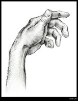 My Hand by Shon-T