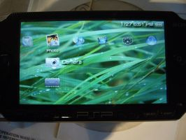 PSP Leopard Theme by P-com