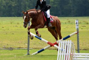 Riding - Jumping Competition by Horselover60-Stock