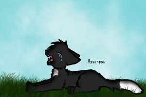 Ravenpaw peices by waffle10