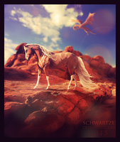 Everyone has to face the sun by Schwartze