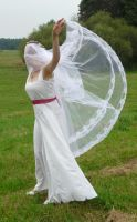 bride on a field - veil + wind 2 by indeed-stock