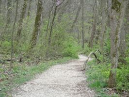 The Path To by SnapShot120
