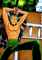 Shirtless Zoro by Hikari-15-L