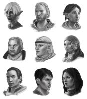 Dragon Age 2 Companions by gravity-zero