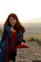 Paint Me a Picture - Amy Pond by HelenaTears