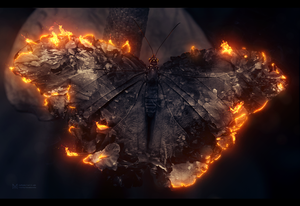Butterfly by msriotte
