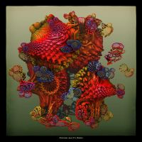 MB10 Crazy Object C by Xantipa2