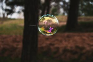 The Whole World A Bubble by LindaMarieAnson