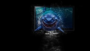 shark - windows by Paullus23