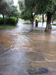 Flash Flooded UNLV 2 by INF3CT3D-D3M0N
