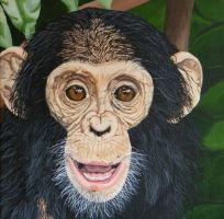 Young Chimpanzee by Cosmic-Cherry-Tree