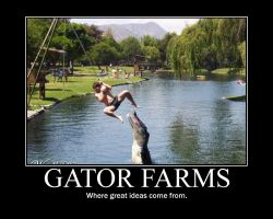 motivational poster gator farm by Konfan2