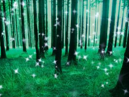 magical forest by anniexhx