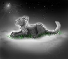 ..Jawpaw--Stuck in Limbo.. by Spilled-Sunlight