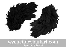 Feather by Wyonet