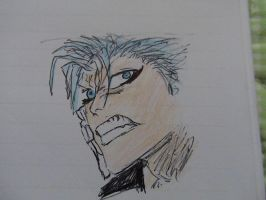 Angry Grimmjow by ser-en