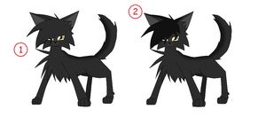 Graystripe:which one. you vote by AmyroseXDSonic