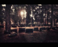 Let us rest in peace by wchild