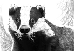 Drawing Challenge Day 4: Favorite animal by PurplePomelo