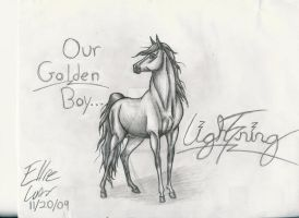 Golden Boy by Blustreakfreak