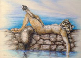 Breakwater Wolf by teiirka