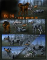 CC Round One- pg. 1 by Canis-ferox