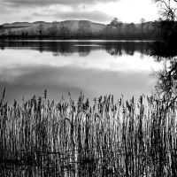 Carlingwark Loch 1 by Coigach