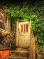 the door by judenlucy