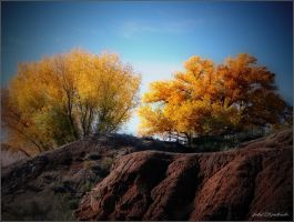 Grand canyons......Utah...39. autumn. by gintautegitte69