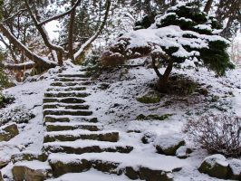 Winter stairs III by starykocur