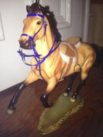 Tack - Running Martingale and Bridle by blueribbon9999