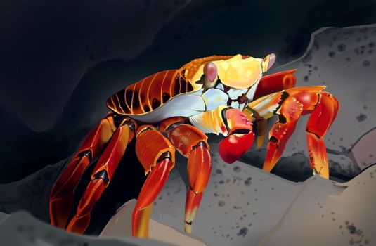 Crab digital painting by iononemillion
