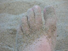 Webbed Toes in the Sand by simply-meggie