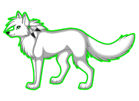The white Wolf by TheWolfFight