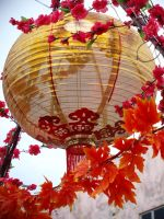 Gold Chinese Lantern by SongYong