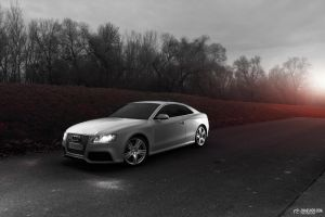 Audi RS5 Coupe Suzukagrey - 1 by mystic-darkness