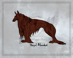 SWK's Royal Blooded by SpiffyInu