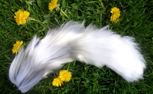 Arctic fox yarn tail by Ibbins
