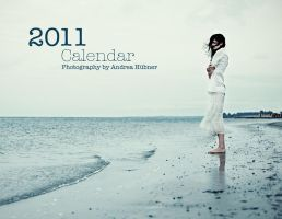 Calendar 2011 by quadratiges