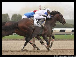 Warrior Takes the Carter by Jessie-kad
