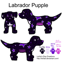 Labrabor Pupple Contest entry by Myrcury-Art