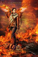 Catching Fire by silviya